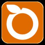 Pt.-Orange-Logo